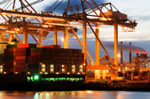 Container terminal activity — Stock Photo