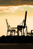 Harbor crane silhouettes — Stock Photo