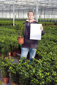 Blank sign in a glasshouse — Stock Photo