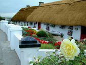 Rural Ireland — Stock Photo