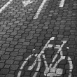 Foto Stock: Bicycle lane