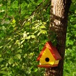 Bird Tree House - Stock Photo