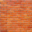 Brick wall — Stock Photo #2115504