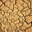 Stock Photo: Dry Dirty Ground