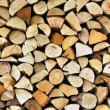 Pile of wood — Stock Photo