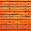 Brick wall — Stock Photo #2486136