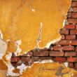 Brick wall — Stock Photo #2619135