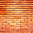Brick wall — Stock Photo #2693090
