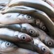 Royalty-Free Stock Photo: Smelt fish