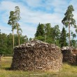 Stock Photo: Round pile of firewood. island Valaam