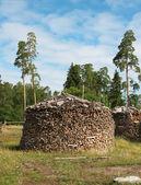 Round pile of firewood. A island Valaam — Stock Photo