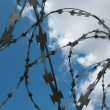 Stock Photo: Barbwire and wall under blue sky