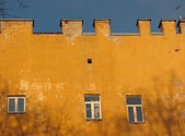 Yellow walls and black bare trees — Stock Photo