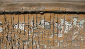 Broun wooden door with old paint — Stock Photo