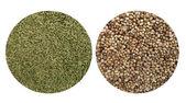 Cumin and coriander seeds — Stock Photo