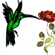 Humming bird — Vettoriale Stock
