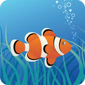 Tropical clown fish under water — Stock Vector