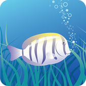Surgeon fish under water — Stock Vector