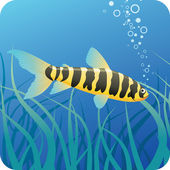Tropical fish under water — Stock Vector