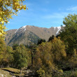 Autumn in mountains of caucasus — Stock Photo