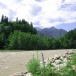 The mountain river — Stock Photo #2232664