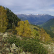 Autumn in mountains — Stock Photo #2233020