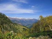 Autumn in mountains — Stock Photo