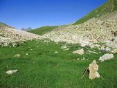 Stone spirit of mountains — Stock Photo