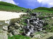 在山中的流 — 图库照片
