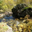 Boulder in a stream — Stock Photo
