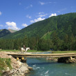 Stock Photo: The bridge on the mountain river