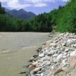 The mountain river — Stock Photo #2571814