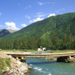 The bridge on the mountain river — Stock Photo