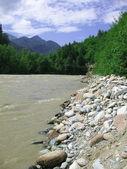 La rivière de montagne — Photo