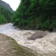 Stock Photo: The mountain river