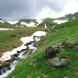 Stream in mountains — Stock Photo #2598868