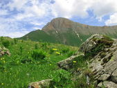 Montanha dzhentu — Fotografia Stock