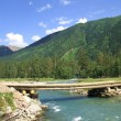 Stock Photo: The bridge on the mountain river,