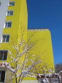 Yellow facade — Stock Photo