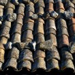 Old roof tiles — Stock Photo #2103941