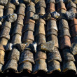 Royalty-Free Stock Photo: Old roof tiles