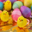 Stock Photo: Easter chicks with eggs