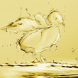 Yellow Water Chick - Stock Photo