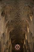Ornamental ceiling — Stock Photo