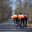 Road cyclists — Stock Photo