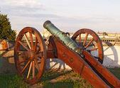 Old field-gun — Stock Photo