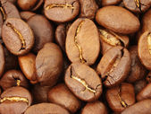 Coffee beans in close-up — Stock Photo