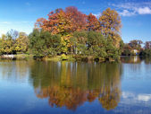 Autumn island in a pond — Stock Photo