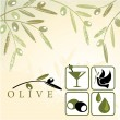 Olive and design elements — Stock Vector