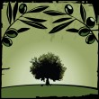 Royalty-Free Stock : Olive tree and branches
